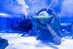 Antalya, Turkey-1 September 2014, People in the Antalya aquarium. The aquariu - stock photo