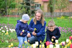 Mother And Children Relaxing around  flower beds Stock Photos