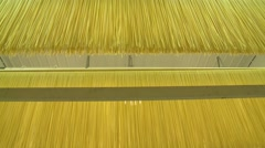Pasta being churned and processed in a factory. Stock Footage