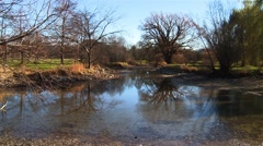 Landscape of an Ottawa arboretum. Stock Footage