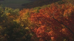 View of the Ottawa/Gatineau countryside from Champlain Lookout. (Pan) (Tilt) - stock footage