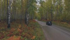 Car goes on the beautiful road in the forest, aerial shooting Stock Footage