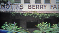 1953: Knott's Berry Farm California old time mining entertainment. Stock Footage