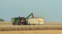 Tractor filling up a truck with wheat grain in the Saskatchewan prairies. Stock Footage