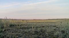 Saskatchewan, Val Marie, Prairie landscape 10 - stock footage
