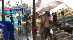 Fishing port at work Stock Footage