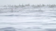 Snow flurries blowing across an arctic landscape. Stock Footage