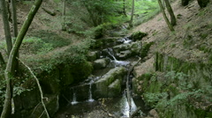 Donnerloch. wild stream Brodenbach next to Mosel River Stock Footage