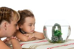 Girl is watching fish in an aquarium - stock photo