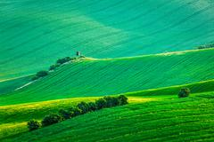 Moravian rolling landscape with hunting tower shack Stock Photos