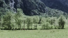 Healthy walk on the mountains Stock Footage