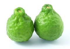 Two Kaffir Lime Fruits on White Background Stock Photos
