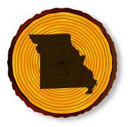 Stock Illustration of Missouri Map On Timber