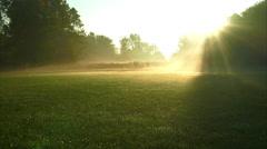 Ronin Stabilized shot across foggy field towards sunrise Stock Footage