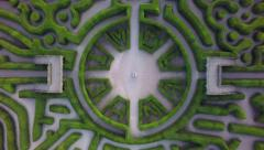 Blenheim Summer: Maze - stock footage
