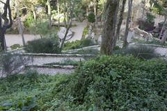 Inside the Moorish Castle slope garden in Sintra Stock Photos