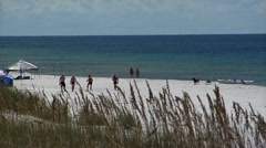 Six  people socializing & walking, sea oat waving, blue water, dog - stock footage