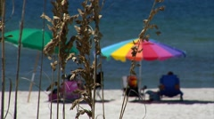 Sea oats wave in breeze,  umbrellas, water slightly blurred in bkgd Stock Footage