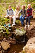 Parents and teens sitting on a bridge in a forest, vertical Stock Photos