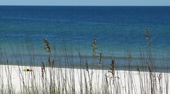 Emerald green clear water, sea oats foreground, white sandy beach Stock Footage