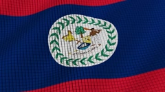 Flag of Belize develops waves. Looped. Full HD 1080. - stock footage