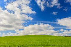 Green field and blue sky in Aberdeenshire, Scotland, UK Stock Photos