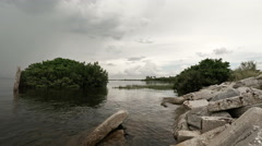 Tampa Bay Wetland Area Stock Footage