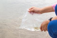 Make merit by releasing fish Stock Photos