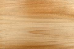 Stock Photo of Woodgrain macro background