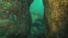 Underwater crack in the rocks in slow motion Stock Footage