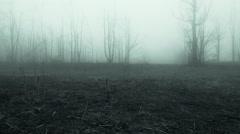 Horror Movie Scene - stock footage