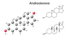 Structural chemical formulas and model of androsterone molecule - stock illustration