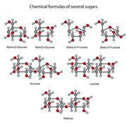 Structural chemical formulas of some sugars Stock Illustration