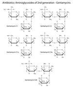 Structural chemical formulas of aminoglycoside antibiotics - gentamycins - stock illustration