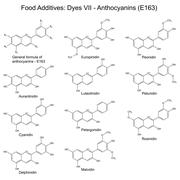Structural formulas of food additives - anthocyanins Stock Illustration