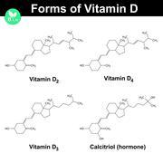 Forms of vitamin D - stock illustration