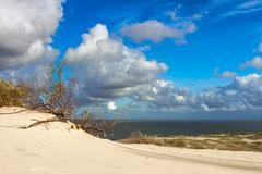 Sand dune in Curonian Gulf Stock Photos