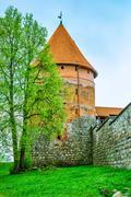 Old tower of castle. Trakai, Lithuania Stock Photos