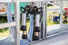 Automatic mechanized milking equipment for farm industry - stock photo