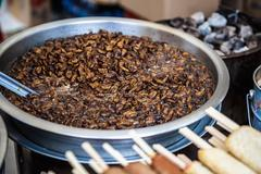Fried beetles or insects - stock photo