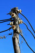 Electricity trunk post Stock Photos