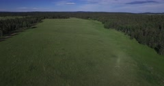 4K Aerial - Forest Valley lake fly up Stock Footage