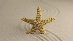 Approximation of starfish lying on the sand, top view Stock Footage