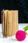 Old book with red binding and flower on a marble table - stock photo