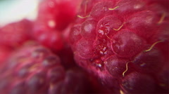 Fresh raspberries shot in ultra closeup with large depth of field - stock footage