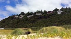 Coastal cliffs with houses and grassy dunes in the foreground Stock Footage