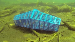 Crab trap on the bottom of a lake Stock Footage