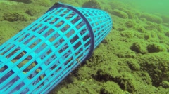 Crab trap with crapbs inside Stock Footage