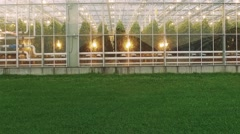 Greenhouses for vegetables during the day, aerial view, fly moving camera. Stock Footage