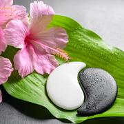 Stock Photo of beautiful spa concept of pink hibiscus flowers and Yin-Yang of stone texture